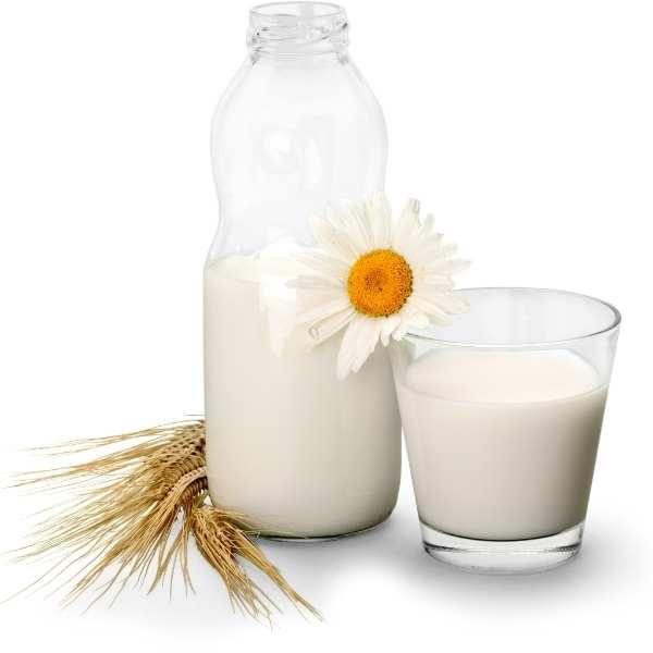 הרב עופר ארז חלב נוכרי