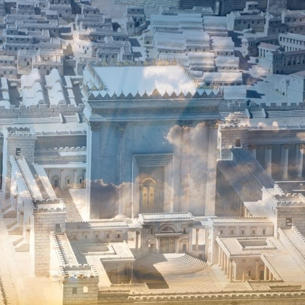 עופר ארז ימי בין המצרים תורה סז
